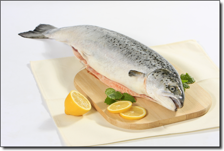 Diet for All fish diet