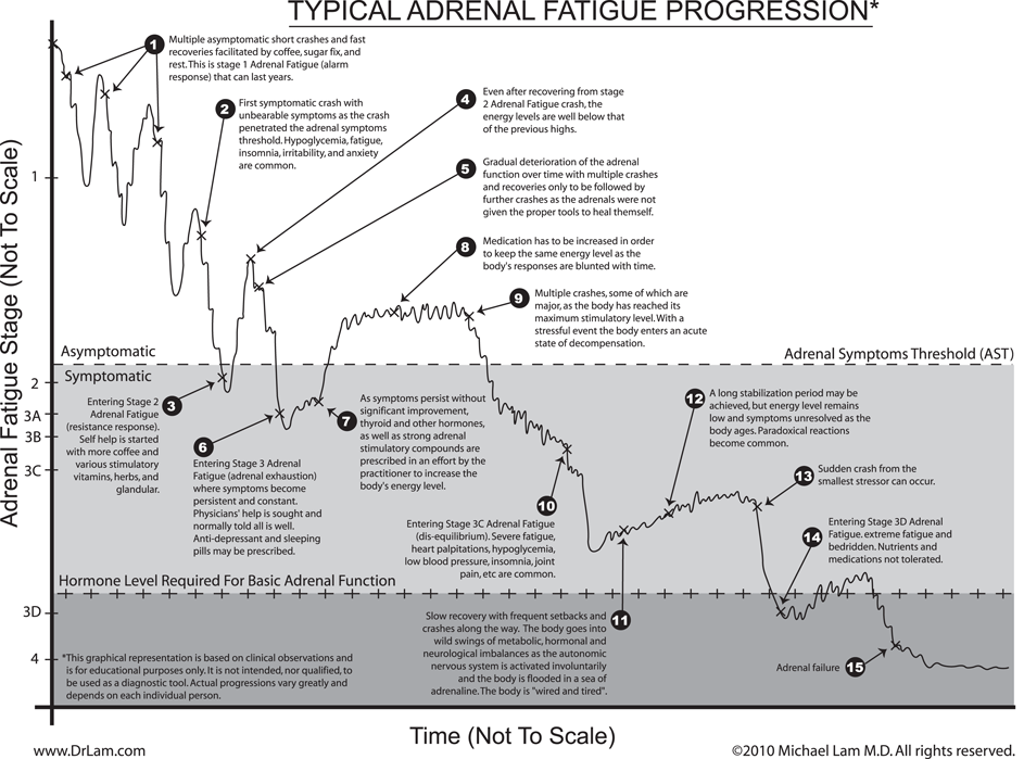 A graph showing the progression of adrenal fatigue in a typical fashion