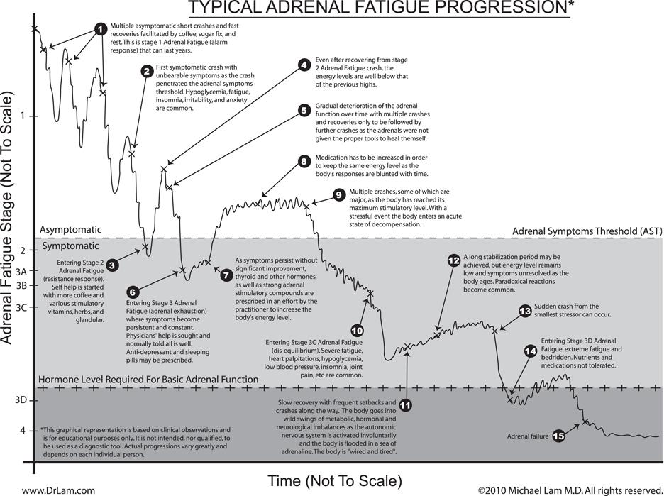 [Immagine: Adrenal_Fatigue_Progression_descriptionv2.png]