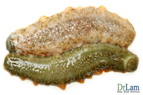 About Osteoarthritis prevention and treatment with sea cucumber