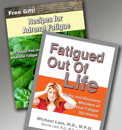 These e-books on Adrenal Fatigue are yours free