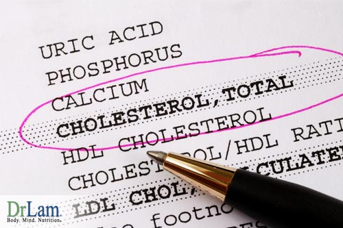 Blood tests and understanding high cholesterol