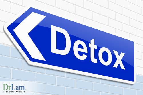Detoxification and the benefits from probiotics