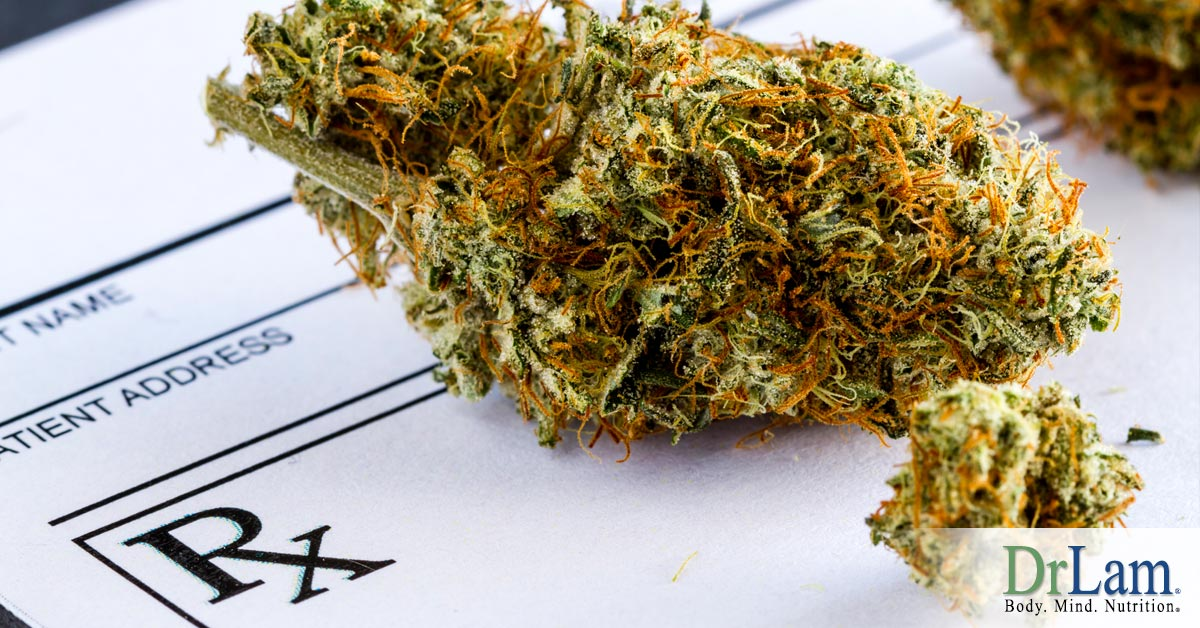 Professional Insight on the Use and Benefits of Medical Cannabis