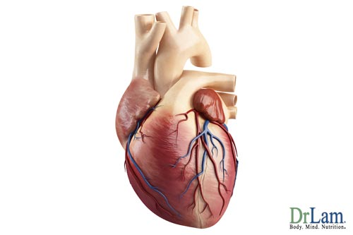 A picture of a heart being affected by adrenal fatigue