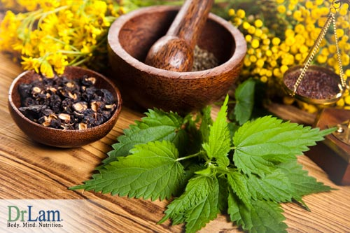 Herbs and hormone imbalance symptoms