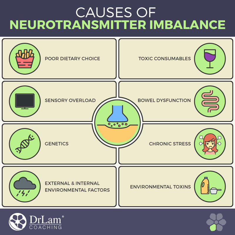Check out this easy to understand infographic about the causes of neurotransmitter imbalance