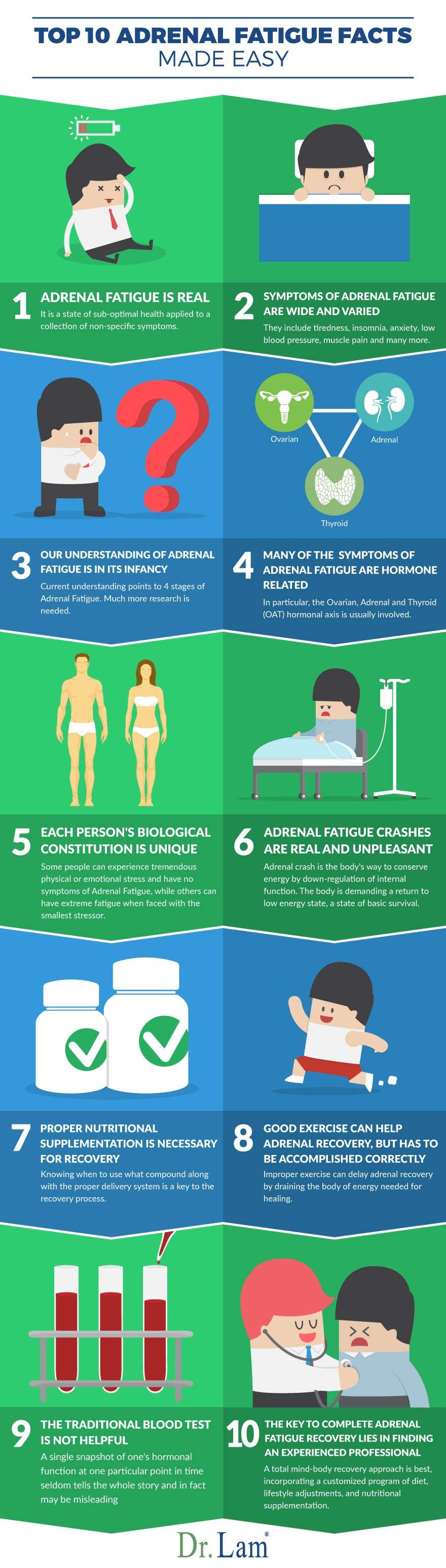 Check out this easy to understand infographic about what is Adrenal Fatigue facts