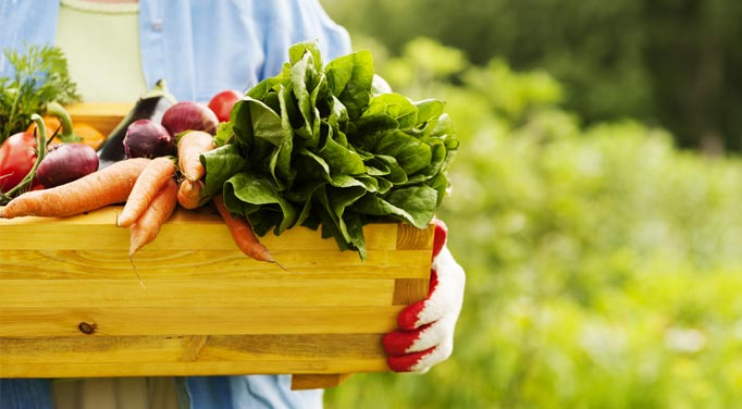 Your local garden can provide clean eating basics