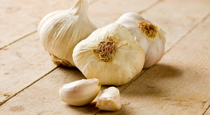 Garlic Health Benefits your body in many ways