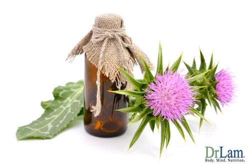 Detox your body naturally using Milk Thistle
