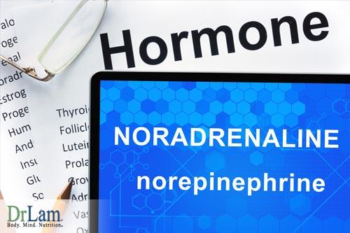 Chemical Imbalance of Norepinephrine