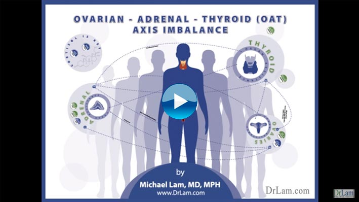 Ovarian Adrenal Thyroid (OAT) axis. Dr. Lam reviews how the ovaries, adrenals, and thyroid glands affect the each other physiologically, clinically or sub-clinically in Adrenal Fatigue.