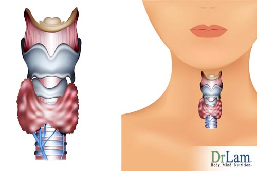 Low thyroid gland function can be a result of adrenal problems