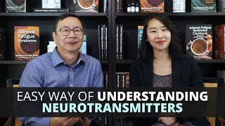 Easy Way of Understanding Neurotransmitters