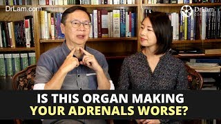 Thyroid and Adrenals