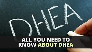 All You Need To Know About DHEA