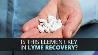 Is This Element Key in Lyme Recovery?
