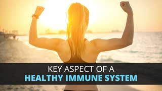 Key Aspect Of A Healthy Immune System