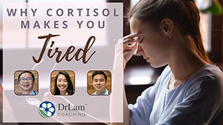 Why Cortisol Makes You Tired